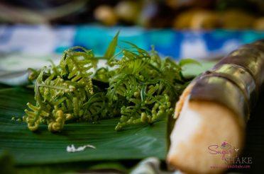 Sugar + Shake blog features Kapahu Living Farm
