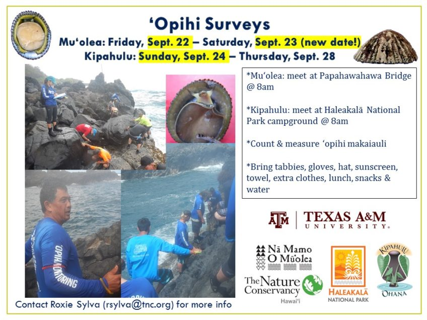 'Opihi Surveys Sept. 26-28