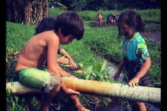 Kapahu Living Farm Community Workday 7/15