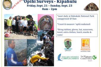 'Opihi Surveys in Kipahulu, 9/21-23