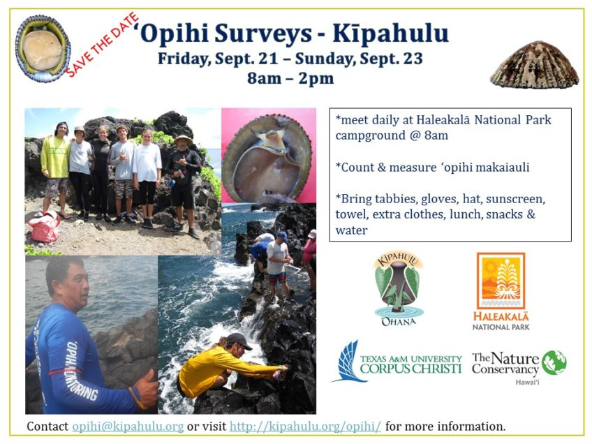 'Opihi Surveys in Kipahulu, 9/21-23
