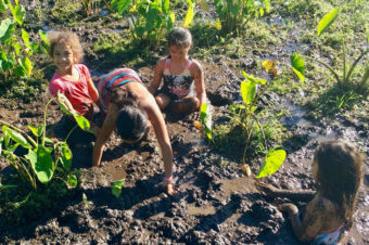 Kapahu Living Farm Community Workday 1/18